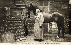 The horse Clever Hans, early 20th century Berlin. Hans purportedly could answer many human questions...